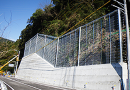 IMGP4445